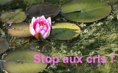 Parents: stop aux cris! L'astuce