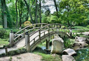 pont-serenite