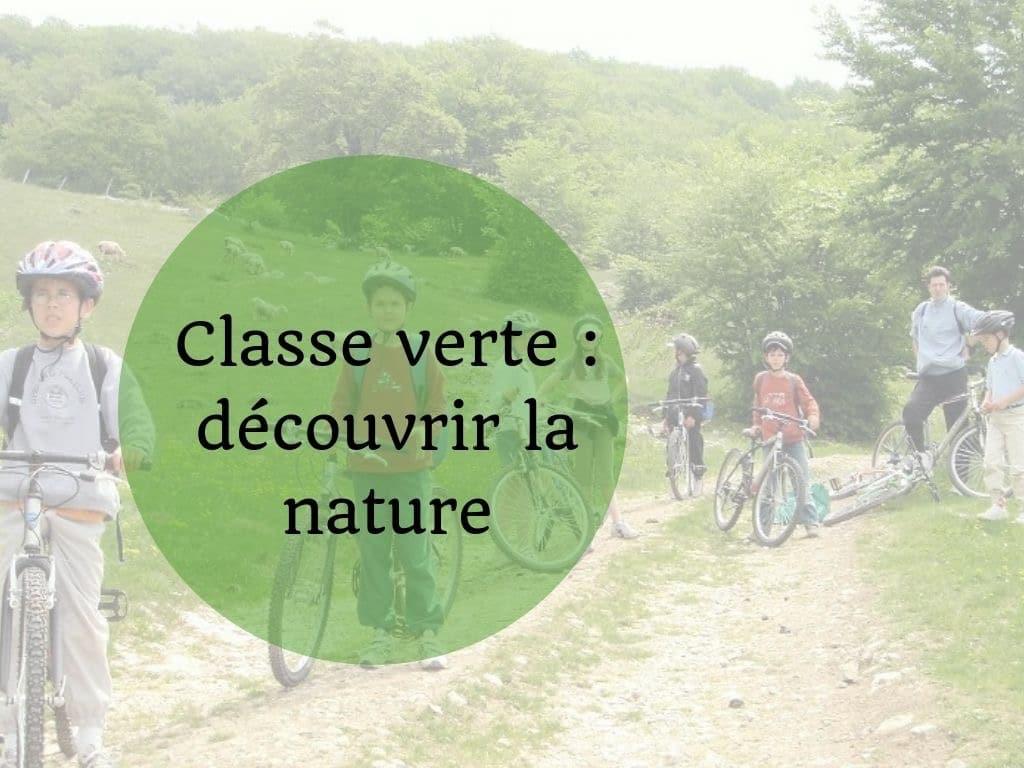 Classe verte : découvrir la nature